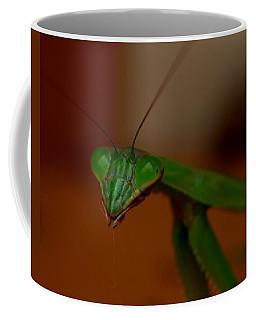 Praying Mantis Closeup Coffee Mug