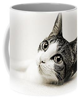 Precious Kitty Coffee Mug