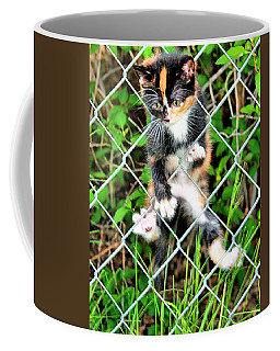 Predicament Coffee Mug by Steven Reed