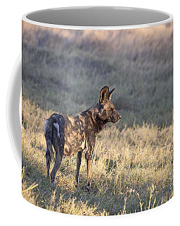 Coffee Mug featuring the photograph Pregnant African Wild Dog by Liz Leyden