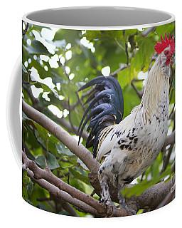 Coffee Mug featuring the photograph Pretty Boy by Erika Weber