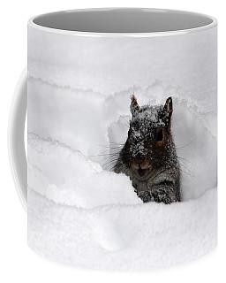 Pretty Cool Cat... Coffee Mug