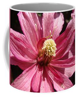 Pretty In Pink Coffee Mug by Cheryl Hoyle