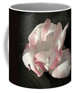Coffee Mug featuring the photograph Pretty In Pink by Photographic Arts And Design Studio