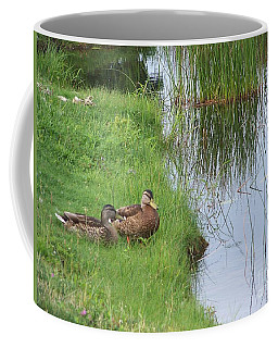 Mated Pair Of Ducks Coffee Mug