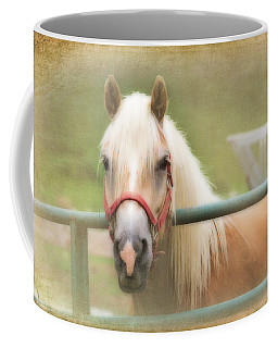 Pretty Palomino Horse Photography Coffee Mug