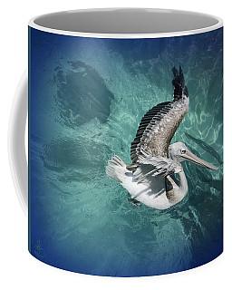 Coffee Mug featuring the photograph Pretty Pelican by Pennie  McCracken