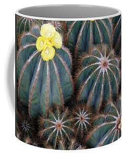 Coffee Mug featuring the photograph Prickly Beauties by Evelyn Tambour