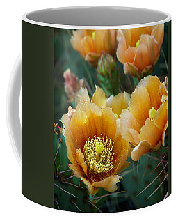 Prickly Pear Cactus Coffee Mug