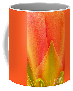 Coffee Mug featuring the photograph Prickly Pear Flower Petals Opuntia Lindheimeni In Texas by Dave Welling