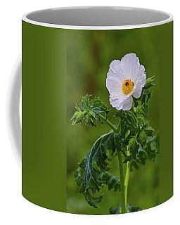 Prickly Poppy Coffee Mug by Gary Holmes