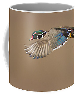 Probably The Most Beautiful Of All Duck Species Coffee Mug
