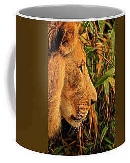 Profiles Of A King Coffee Mug