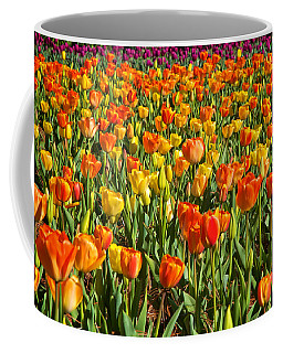 Profusion Of Tulips Biltmore Estate Nc Coffee Mug