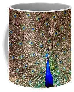 Coffee Mug featuring the photograph Proud Peacock by Geraldine DeBoer