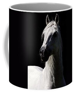 Proud Stallion Coffee Mug by Wes and Dotty Weber
