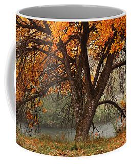 Provo Autumn #1 Coffee Mug