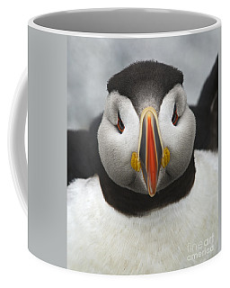 Puffin It Up... Coffee Mug