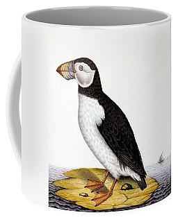 Puffin, Marmon Fratercula, Circa 1840 Coffee Mug