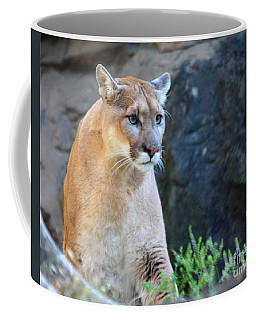 Puma On The Watch Coffee Mug by John Telfer