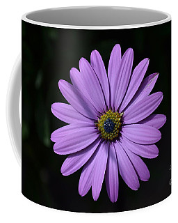 Purple African Daisy Coffee Mug