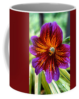 Purple And Orange Coffee Mug