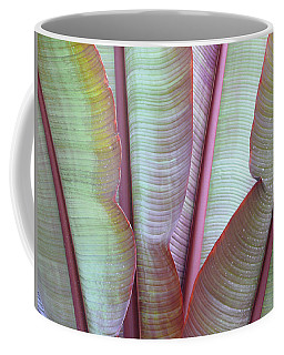 Coffee Mug featuring the photograph Purple Banana by Evelyn Tambour