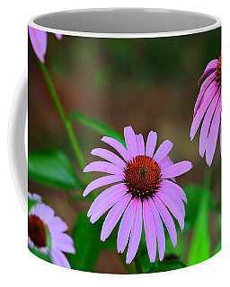 Purple Coneflower - Echinacea Coffee Mug