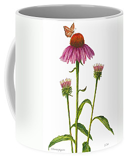 Purple Coneflower - Echinacea Purpurea  Coffee Mug