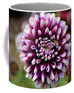 Purple Dahlia White Tips Coffee Mug