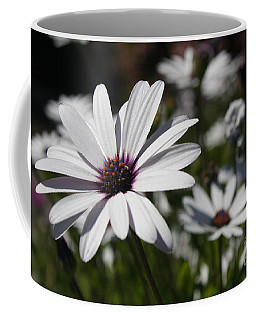 Purple Daisies 2 Coffee Mug