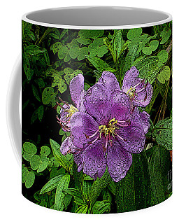Coffee Mug featuring the photograph Purple Flower by Sergey Lukashin