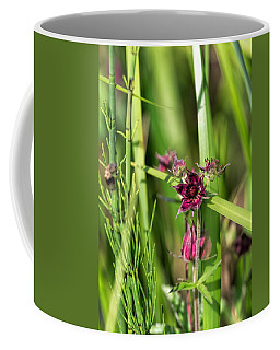 Coffee Mug featuring the photograph Purple by Leif Sohlman