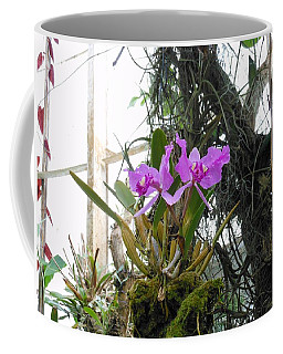 Purple Orchid Coffee Mug by Kay Gilley