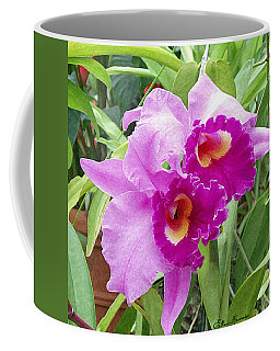 Purple Cattleya Orchids Coffee Mug
