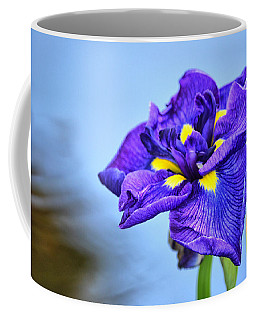 Purple Pond Iris Coffee Mug