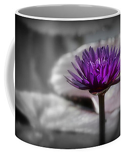 Purple Pond Lily Coffee Mug