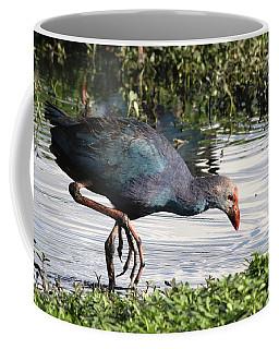 Coffee Mug featuring the photograph Purple Swamphen by Ramabhadran Thirupattur