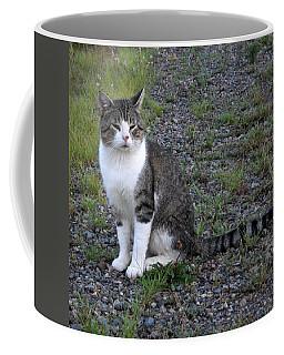 Purr-fectly Posed Coffee Mug by Kent Lorentzen