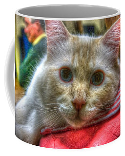Coffee Mug featuring the photograph Purrfect Companion by Dennis Baswell