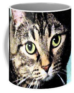 Coffee Mug featuring the photograph Purrfectly Bright Eyed by Nina Silver
