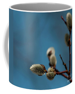 Pussy Willow... Coffee Mug by Nina Stavlund