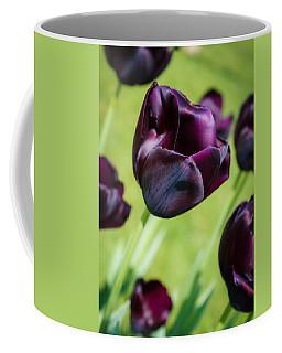 Queen Of The Night Black Tulips Coffee Mug