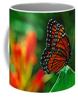 Coffee Mug featuring the photograph Queen by Tam Ryan