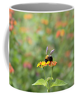 Coffee Mug featuring the photograph Quiet Time by Geraldine DeBoer