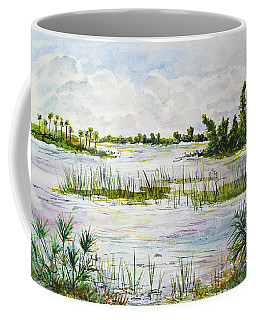 Quiet Waters Park Deerfield Beach Fl Coffee Mug
