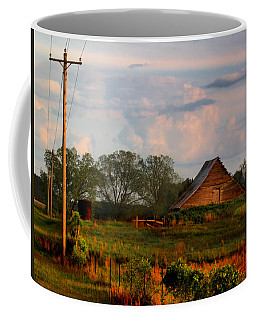Coffee Mug featuring the photograph Quintessentially  South Georgia by Laura Ragland