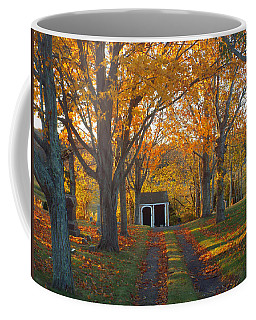 Coffee Mug featuring the photograph Quivet Morning by Dianne Cowen