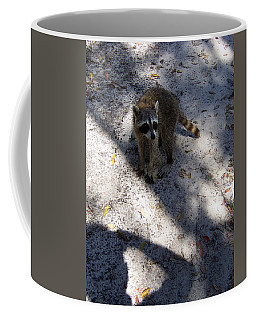 Raccoon 0311 Coffee Mug