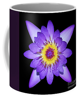 Radiant Coffee Mug by Judy Whitton